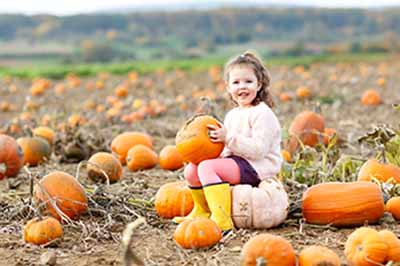 Why Your Ross Township Dentist Suggests Adding Pumpkin to Your Diet